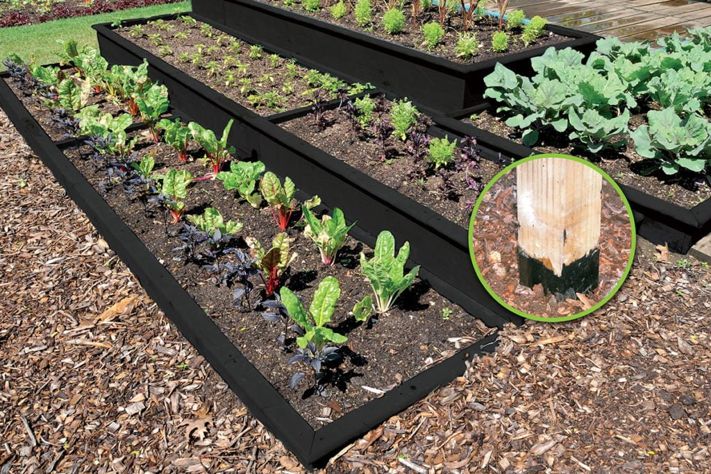 How to build a raised timber vegetable garden