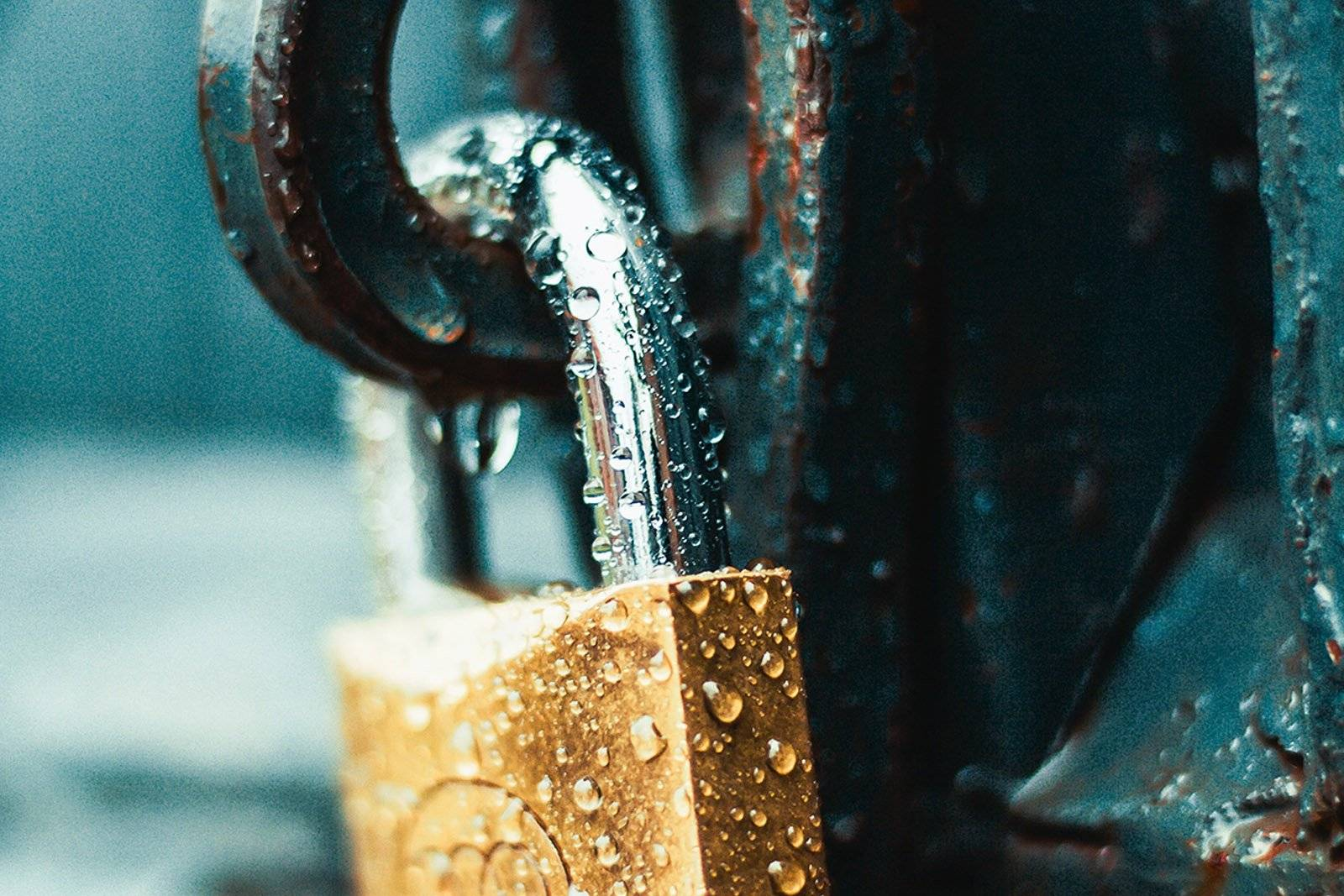 wet golden padlock attached to a rusted lock